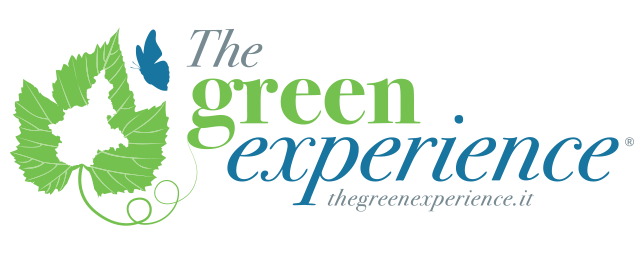 The Green Experience Logo
