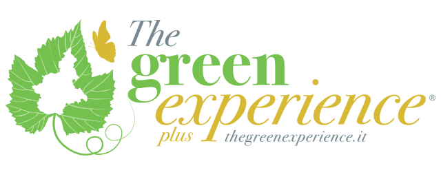 The Green Experience Plus Logo
